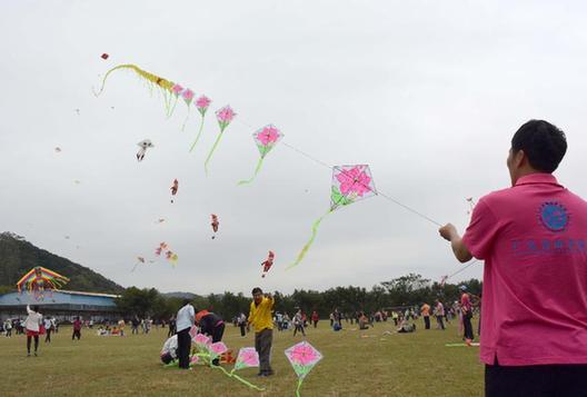 梧州上千風箏飛