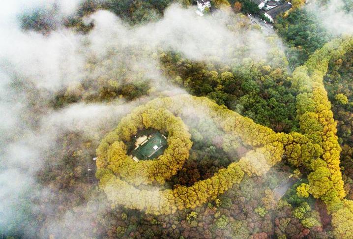 """穿过云雾俯瞰南京紫金山""""最美项链"""""""