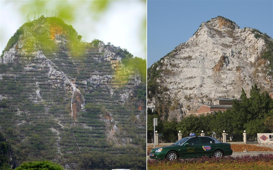 廣西柳州對廢棄採石山進行生態修復