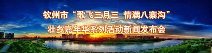 2017年欽州市壯族三月三八桂嘉年華係列活動