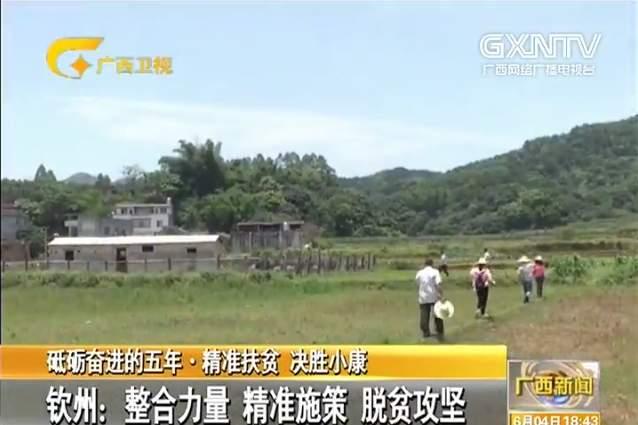 欽州:整合力量 精準施策 脫貧攻堅
