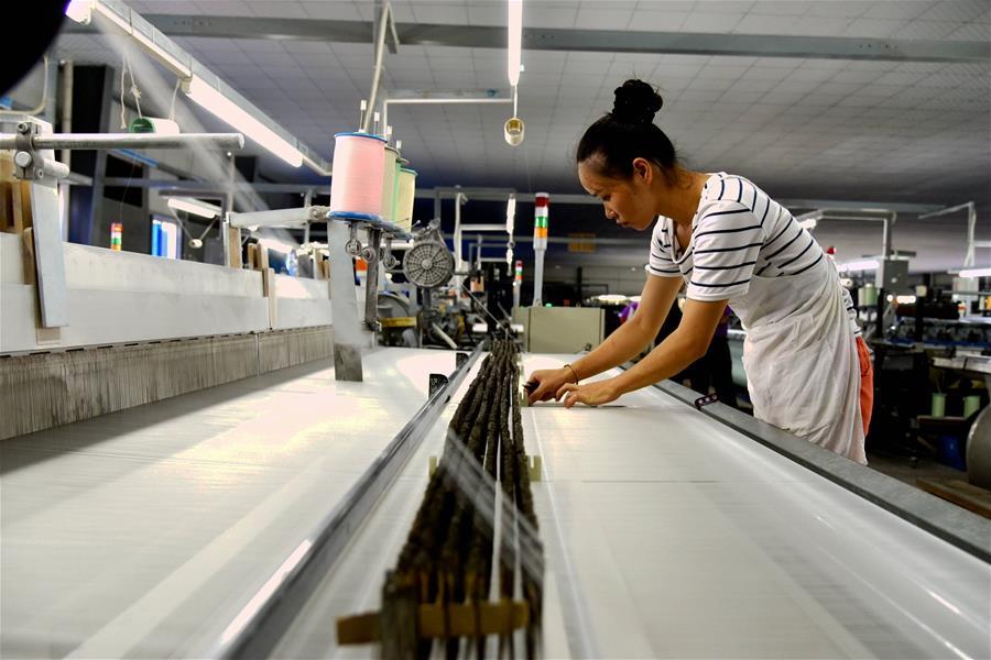 廣西宜州:桑蠶産業進入循環經濟發展快車道