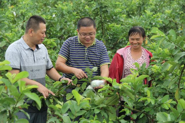那隆鎮:46個合作社開啟農村經濟發展新引擎