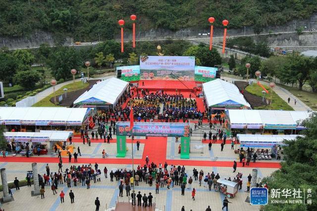 西林第七屆沙糖桔、茶葉産業文化展示周