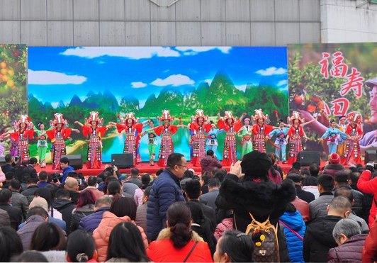 桂林永福舉行富硒沙糖桔推介活動