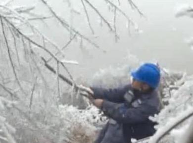 广西:13条线路覆冰 南方电网广西公司全力应对新一轮寒潮