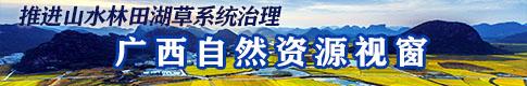 廣西自然資源(yuan)視(shi)窗