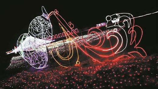 四季花海花卉基地夢幻燈光吸引數萬遊客賞燈