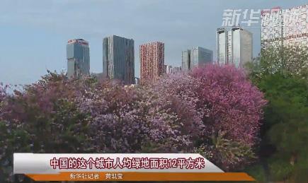 中国的这个城市人均绿地面积12平方米