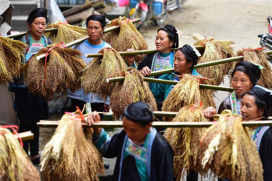 苗山脱贫影像志——禾把为贺 乌英苗寨延续百年的喜宴风俗