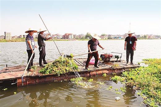 """玉林開展""""保護南流江母親河,我們在行動""""活動"""