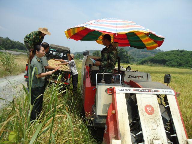 右江區加強高溫多雨季節農機安全事故防范工作