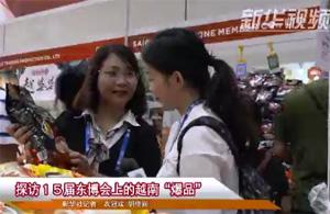"""探访15届东博会上的越南""""爆品"""""""