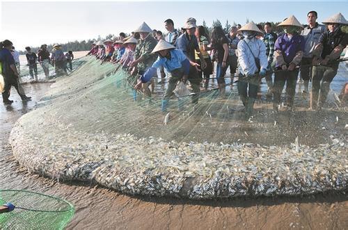 廣西東興:國門漁家話豐收