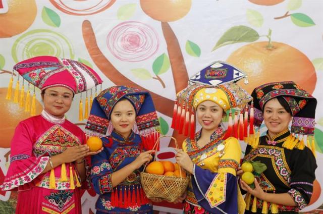 右江區六沙柑橘産業扶貧(核心)示范區産品推介暨電商駐場發布會舉行