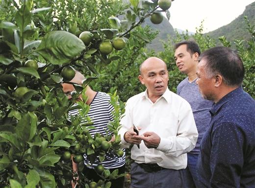 賀州市2018年貧困村科技特派員培訓會舉行