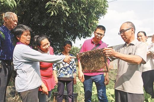 蒙山:養蜂業成扶貧産業新支柱