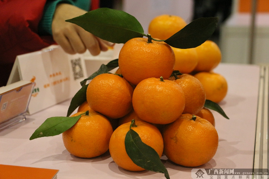60多個柑橘品牌參展第三屆廣西柑橘大會