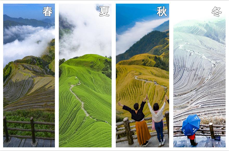 無人機帶您領略廣西龍脊梯田的四季美景
