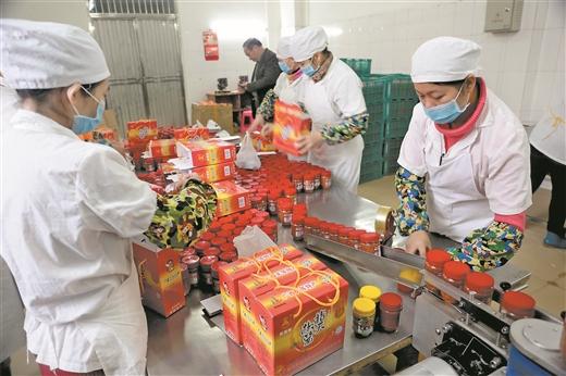 天等:抓緊生産指天椒醬 備戰春節銷售旺季