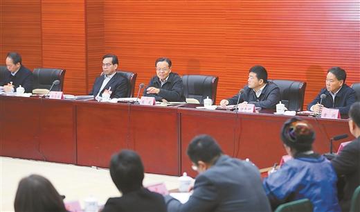陳武參加政協聯組討論:扎實做好今年脫貧攻堅工作