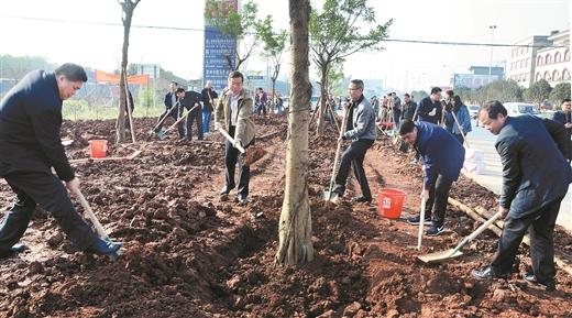 賀州市平桂區開展義務植樹主題黨日活動