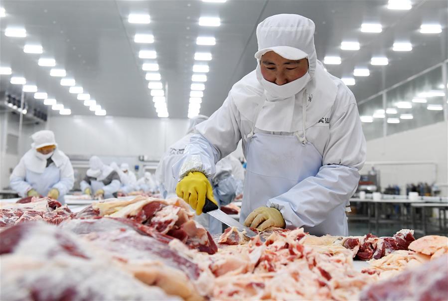 廣西都安:冷鏈倉儲物流助脫貧