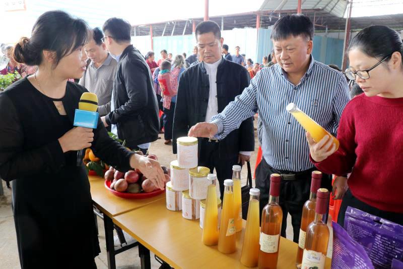 廣西高效農業電商扶貧鄉村行活動在岑溪舉行