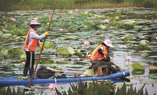 賀州愛蓮湖:清理垃圾護美景