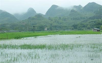 暴雨來襲 廣西啟動重大氣象災害(暴雨)Ⅱ級應急響應