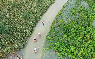 強降雨已致廣西36萬多人受災 緊急轉移安置上萬人