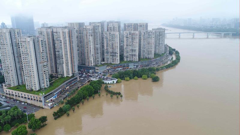 廣西柳州:柳江再迎洪水