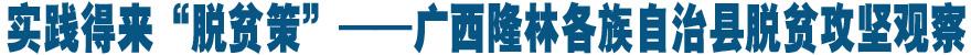 """實踐得來""""脫貧策""""——廣西隆林各族自治縣脫貧攻堅觀察"""
