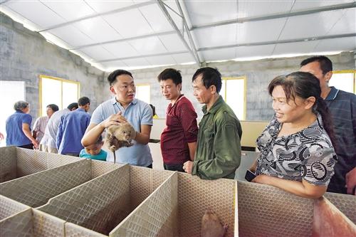 古棠村激發貧困群眾內生動力推動脫貧攻堅