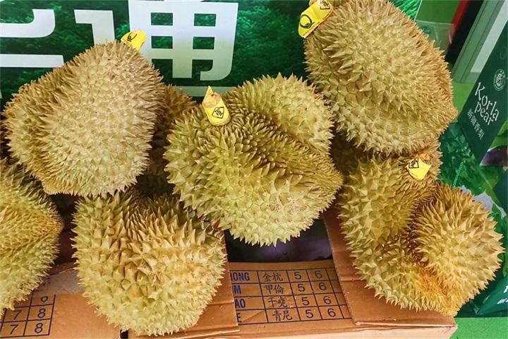 你吃的榴蓮、山(shan)竹(zhu),可能就(jiu)來(lai)自這兒!