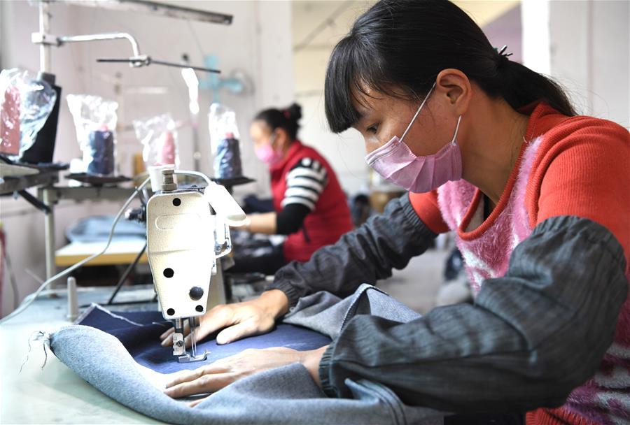 廣西北流:齊心協力助脫貧