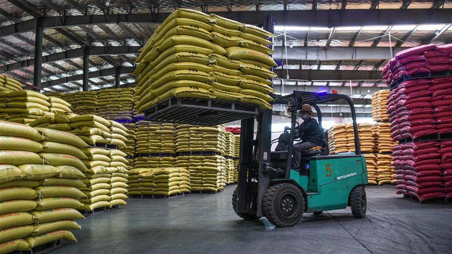廣西欽州:有序恢復生産