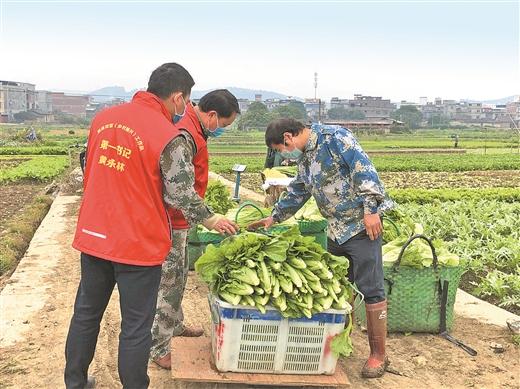 進村下地幫農助農
