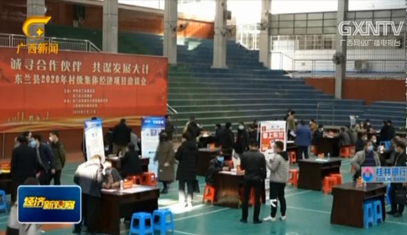 """東蘭:招商洽談助脫貧 戰""""疫""""抓經濟兩不誤"""