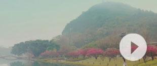 煙雨(yu)桂(gui)林 如期而至(zhi)