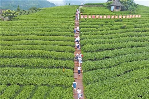 依托旅遊資源 助力三江高質量打贏打好脫貧攻堅戰