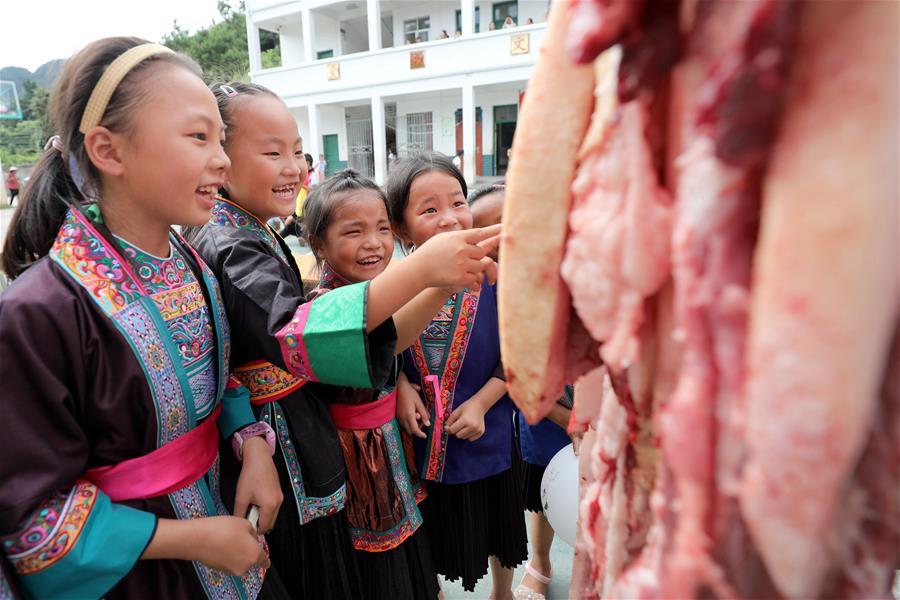 看!侗鄉小學又發活魚、豬肉了