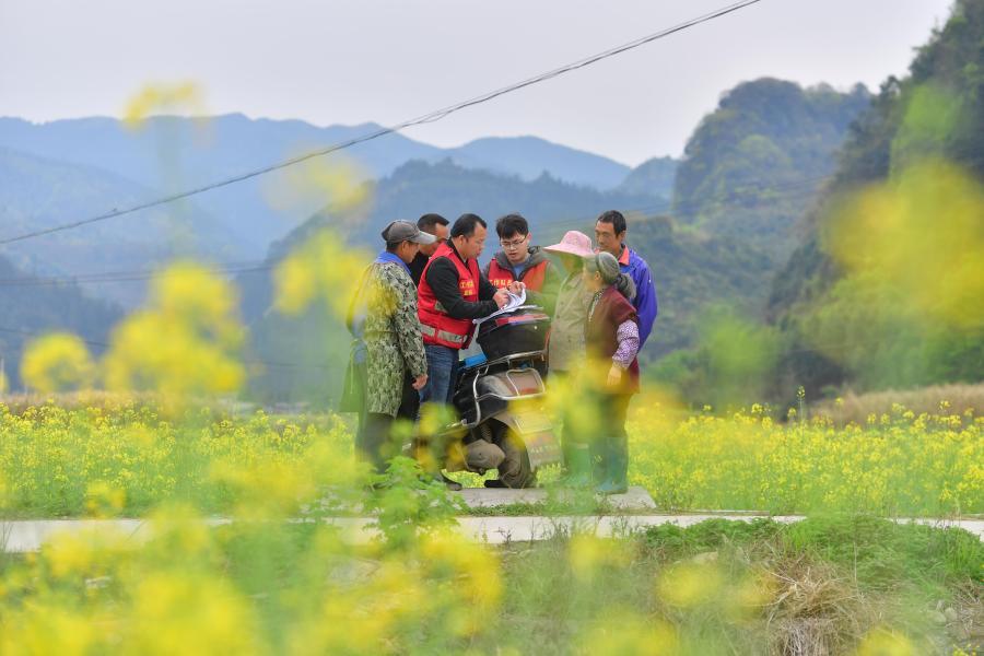 廣西融安:駐村工作隊助力春播