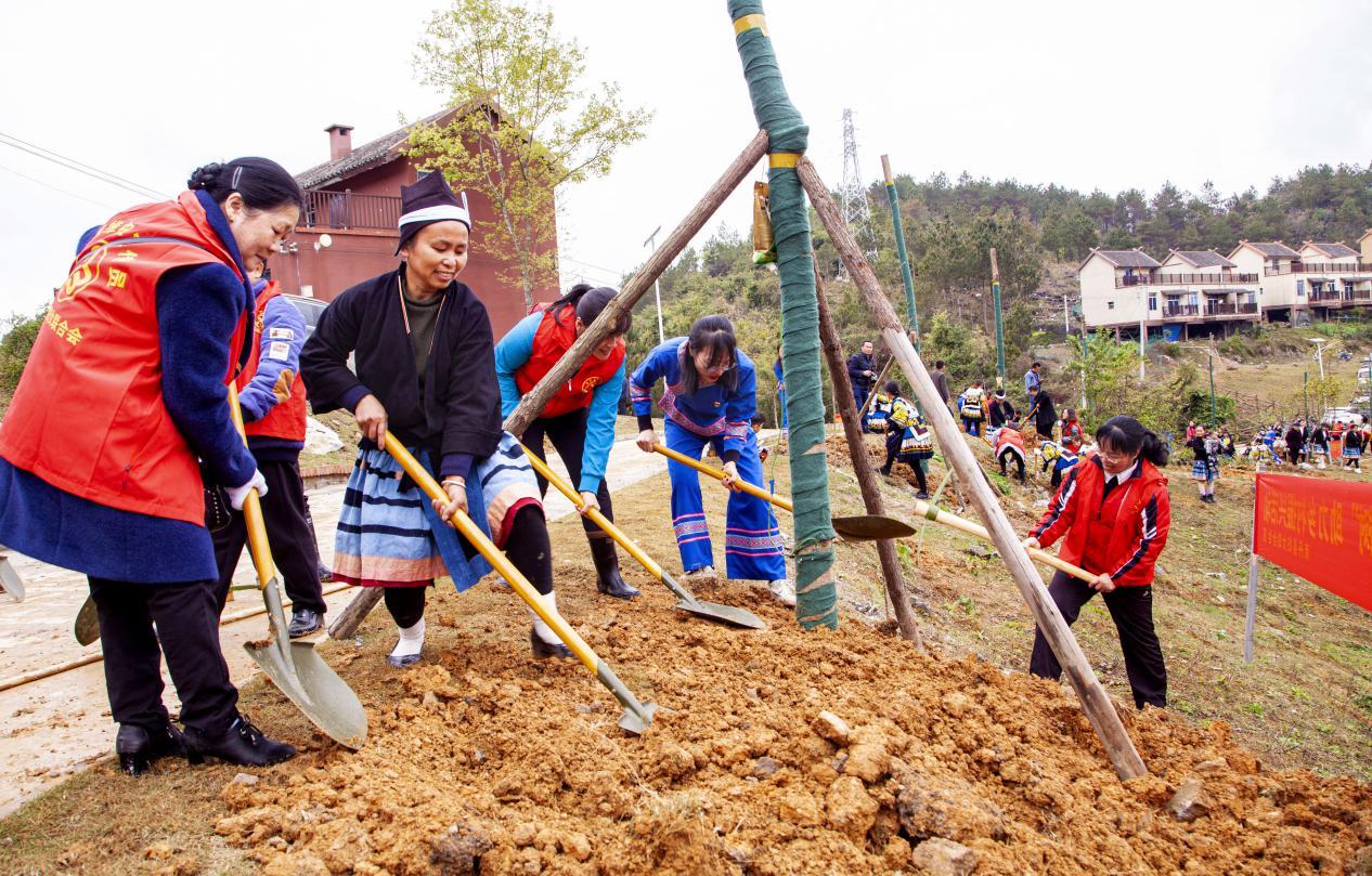 廣西南丹:鄉村振興 民族同行
