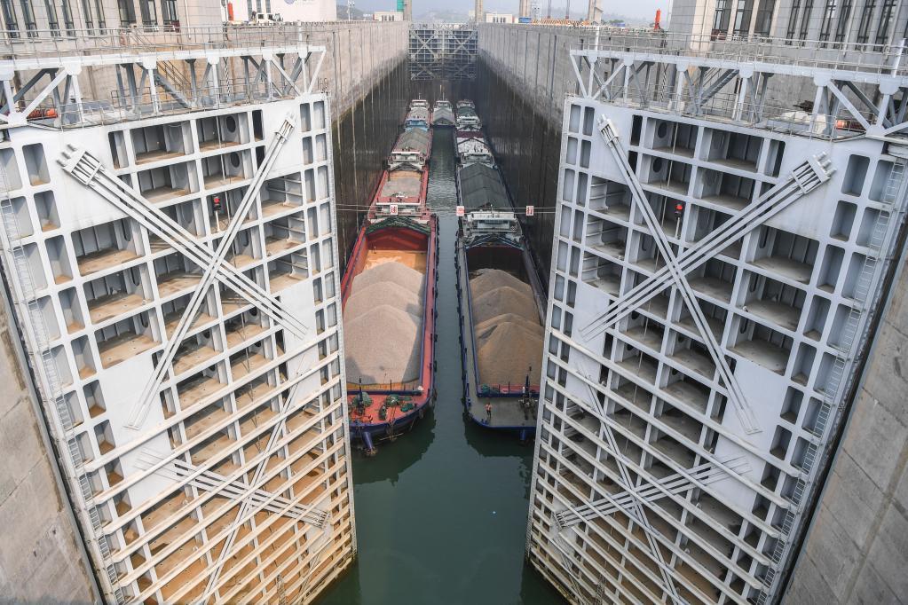 廣西大藤峽水利樞紐航運效益明顯