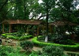 梧州中山公園