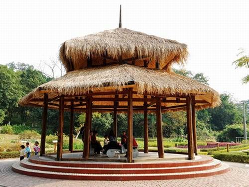廣西藥用植物園