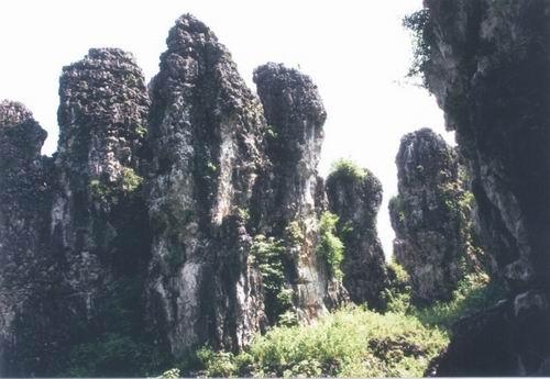 金釵石林城堡